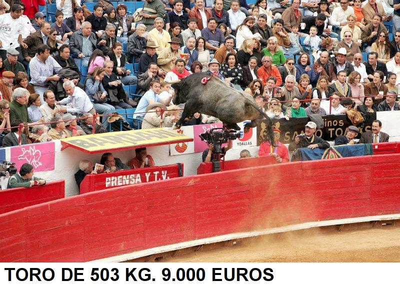 Toro saltando al tendido en una plaza de toros
