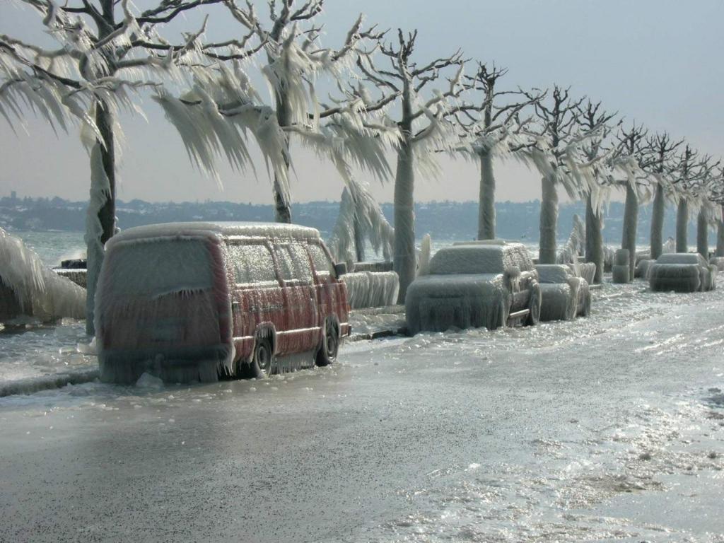 Coches cubiertos de hielo